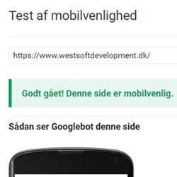 hurtig hjemmeside til google